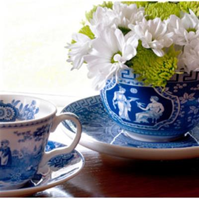BLUE ROOM DINNERWARE
